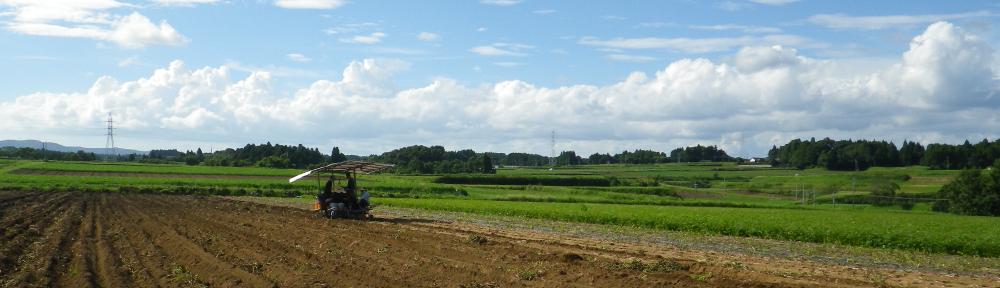吉川農園blog